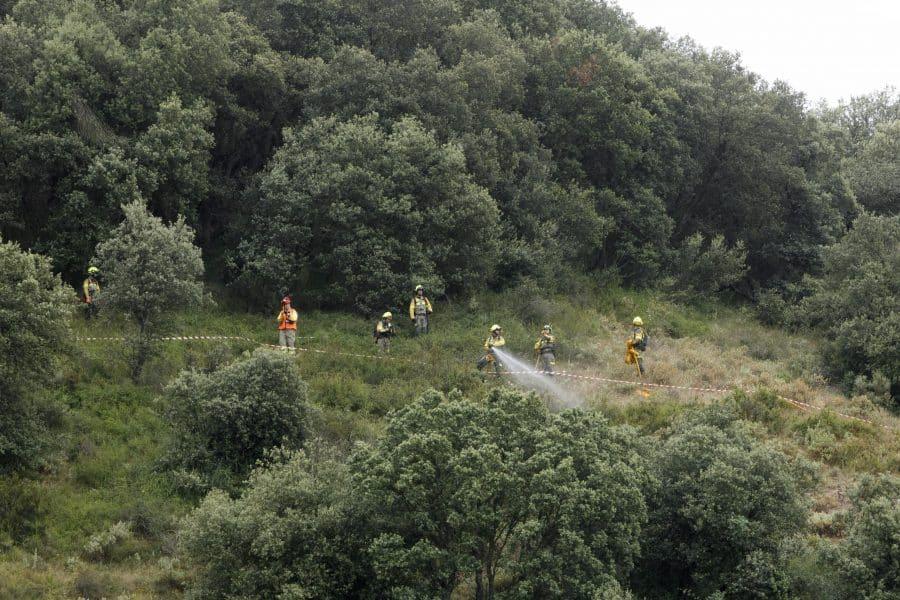 La Rioja activa un dispositivo con 300 profesionales para afrontar la temporada de incendios forestales 5