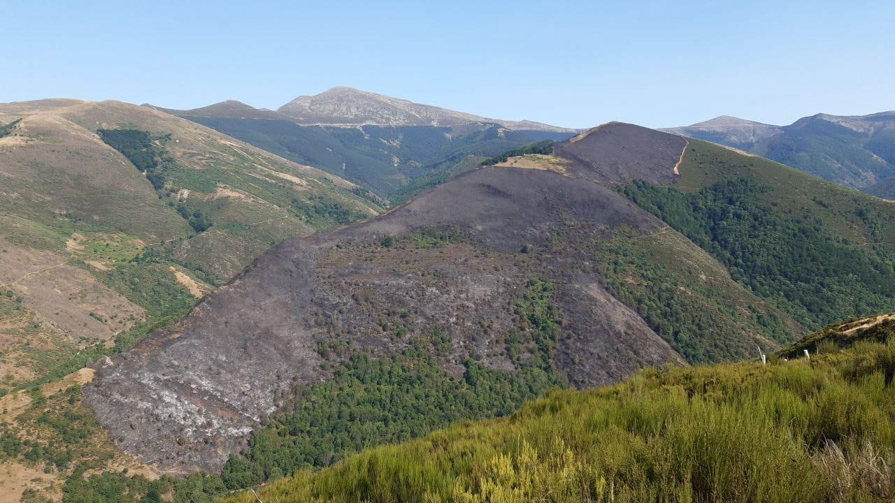 Extinguido el incendio forestal de Ezcaray que ha quemado cerca de 100 hectáreas 1