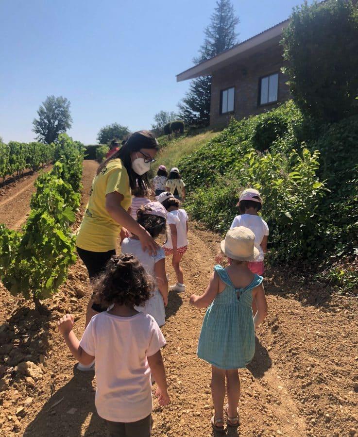 Divertitur ofrece a niños y jóvenes planes de ocio y tiempo libre en la zona de la Sonsierra 5
