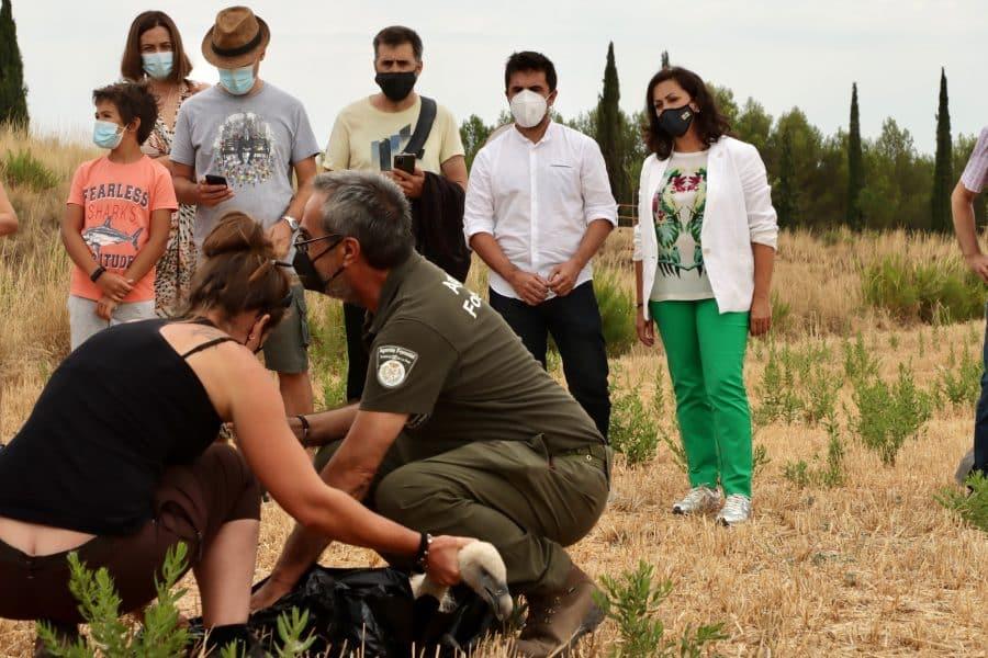 La Rioja realiza la suelta colectiva de 27 aves del programa 'Ayúdale a volar' 1