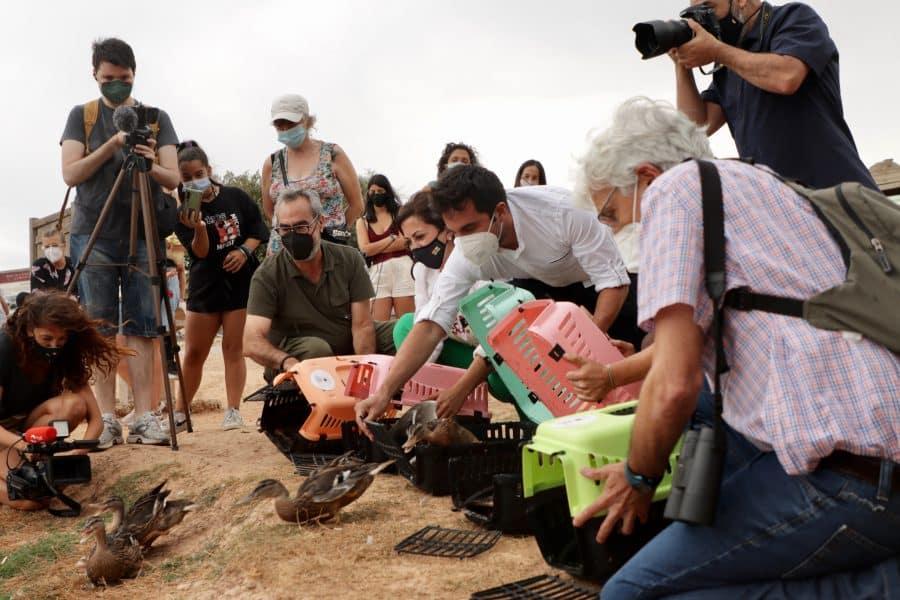 La Rioja realiza la suelta colectiva de 27 aves del programa 'Ayúdale a volar' 5