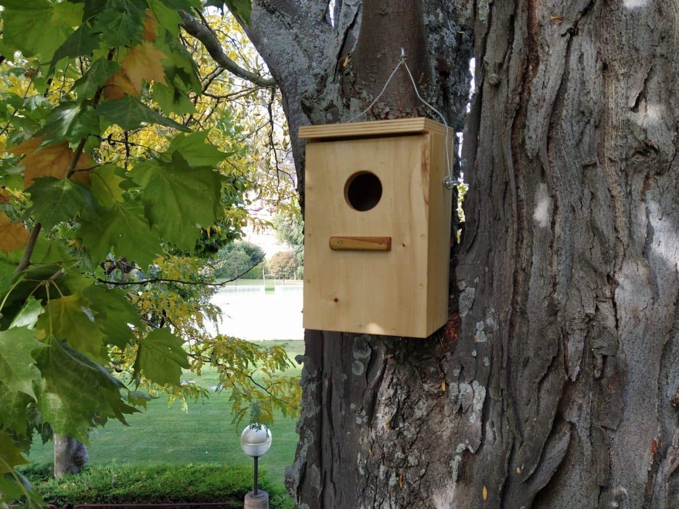 Casa nido