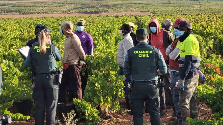 La Guardia Civil intensifica en La Rioja las actuaciones contra la explotación laboral y la trata de personas durante la vendimia 7