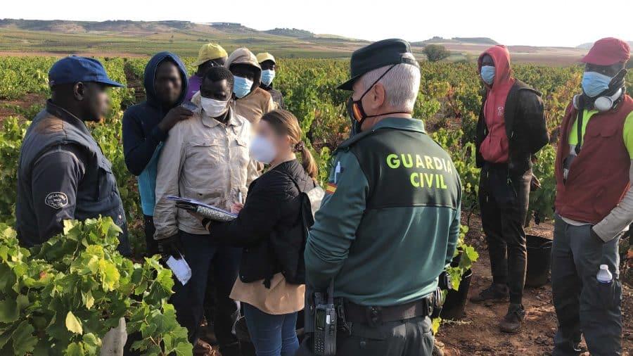 La Guardia Civil intensifica en La Rioja las actuaciones contra la explotación laboral y la trata de personas durante la vendimia 6
