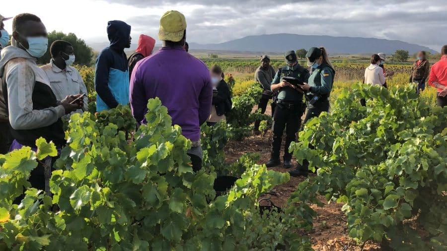 La Guardia Civil intensifica en La Rioja las actuaciones contra la explotación laboral y la trata de personas durante la vendimia 5