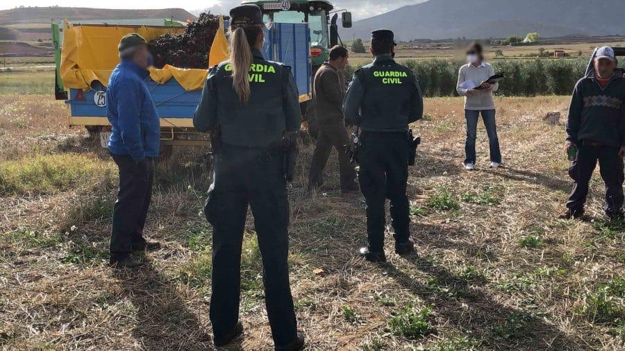 La Guardia Civil intensifica en La Rioja las actuaciones contra la explotación laboral y la trata de personas durante la vendimia 1