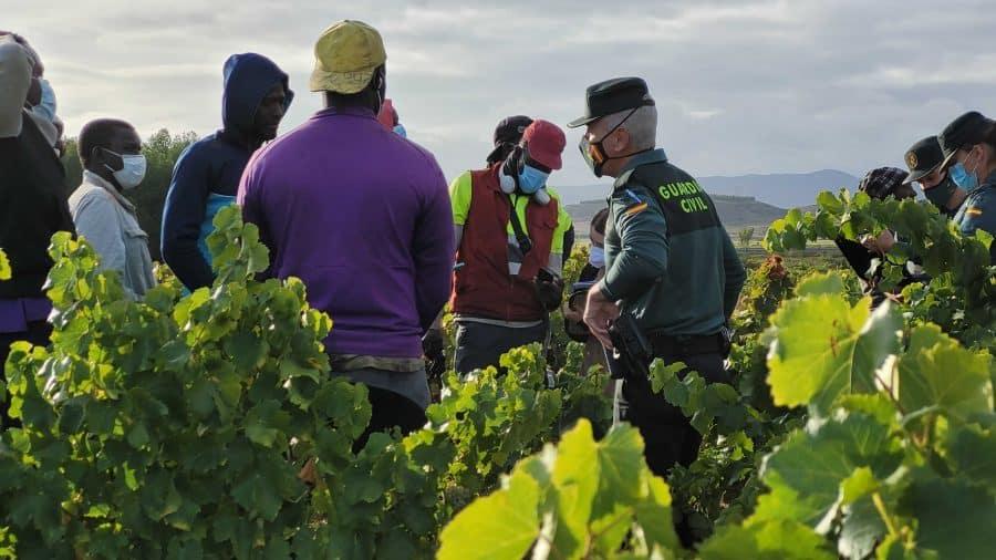 La Guardia Civil intensifica en La Rioja las actuaciones contra la explotación laboral y la trata de personas durante la vendimia 8
