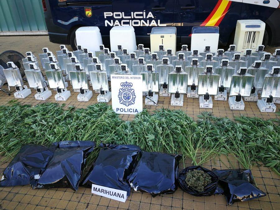 La Policía detiene a cuatro personas tras desmantelar una plantación de marihuana en Logroño 6